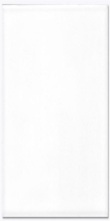 Basic Wand 30x60cm weiß glzd.