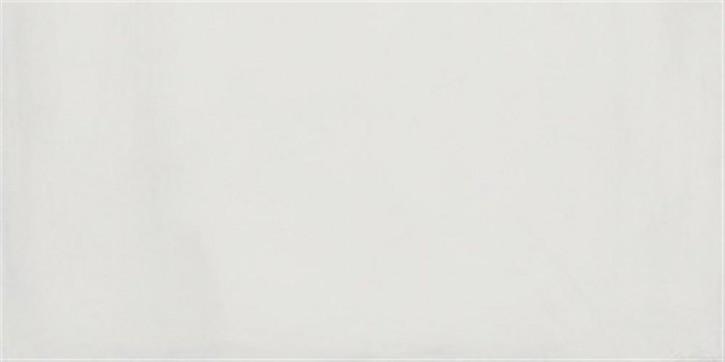 Mauerblume Wand 30x60cm grau