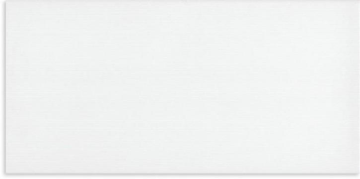 Mikado Wand 30x60cm weiß glänzend