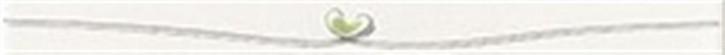 Quaaak! Listelli 25x2cm  Herz grün
