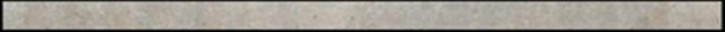 SKP Bellini grigio  1x24,8 (VENEZIA GRIGIO)
