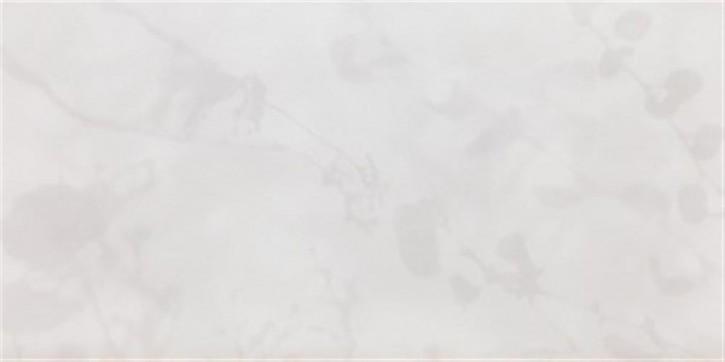 Vari glz. Licht & Schatten rek. 30x60